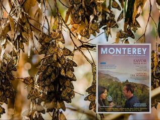 Monterey County 2015 Official Travel Guide