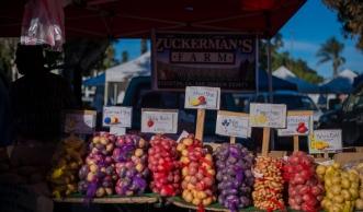 150214-8196 Farmers Market