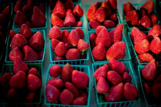 150214-8245 Farmers Market