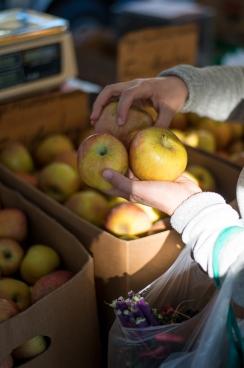 150214-8266 Farmers Market