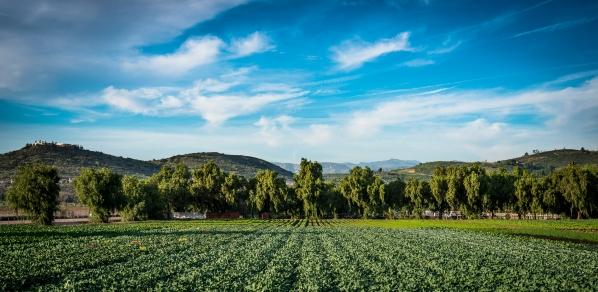 150202-7601 Underwood Family Farm