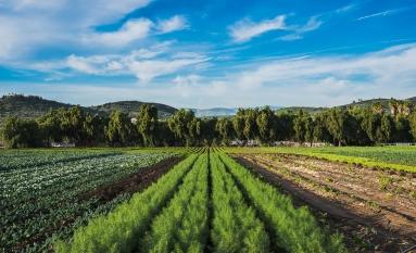 150202-7604 Underwood Family Farm