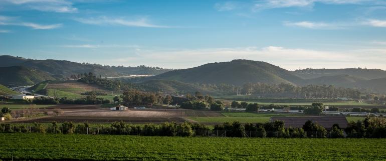 150202-7614 View of Tierra Rjada farm from Tierra Rejada Rd